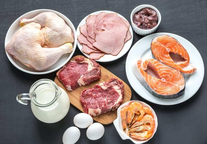 Основы правильного питания: источники белка